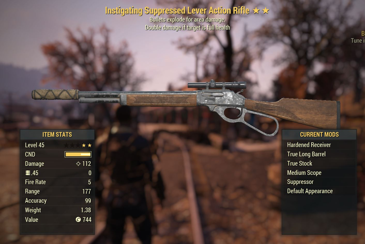 Lever Action Rifle IE