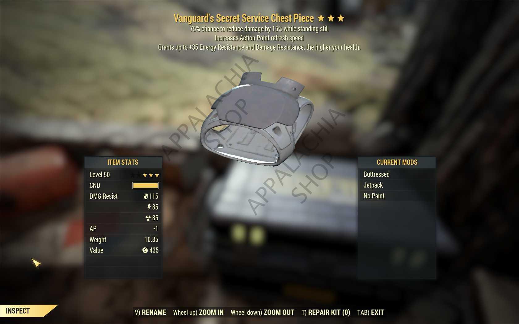 Vanguard's Secret Service Sentinel Armor Set (FULL AP REFRESH 5/5)[FULL Mods + Jetpack] (Wastelander