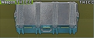 THICC weapon case / T H I C C weapon case / Оружейный кейс
