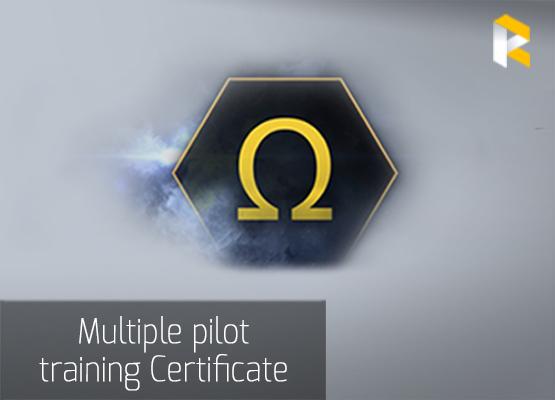 Multiple pilot training Certificate from RPGcash team