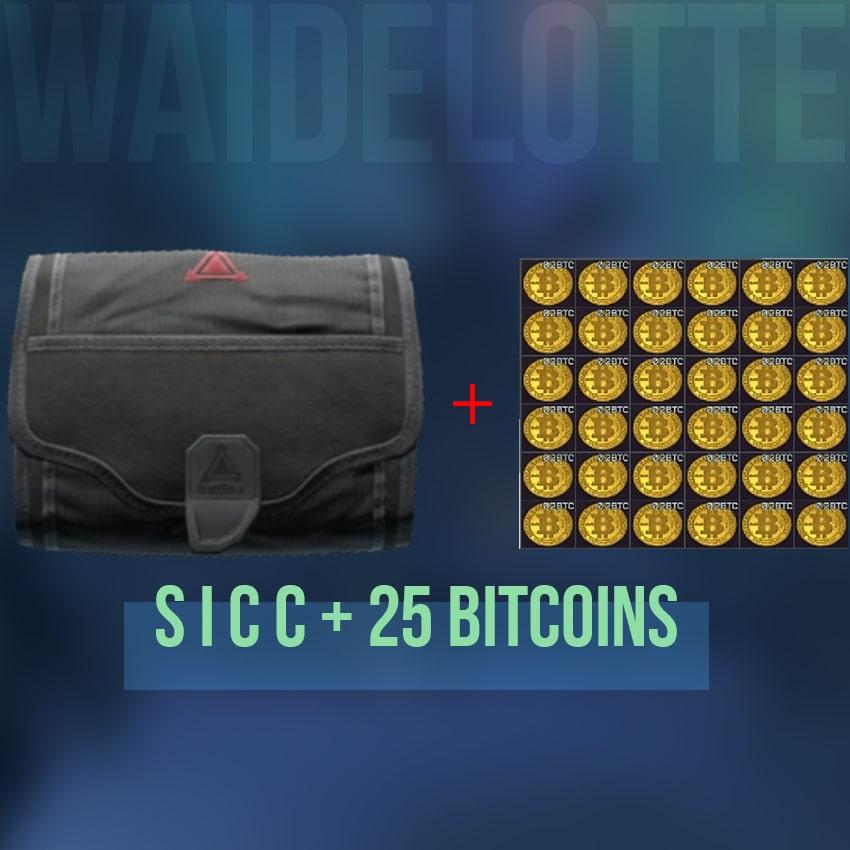 Small S i c c case + 25 Bitcoins CHEAP