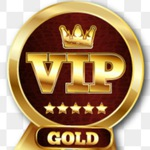 Vip Blade and Soul  Gold for VIP Buyers  ^_^
