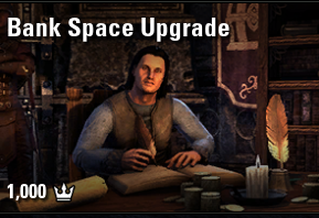 Bank Space Upgrade [NA-PC]