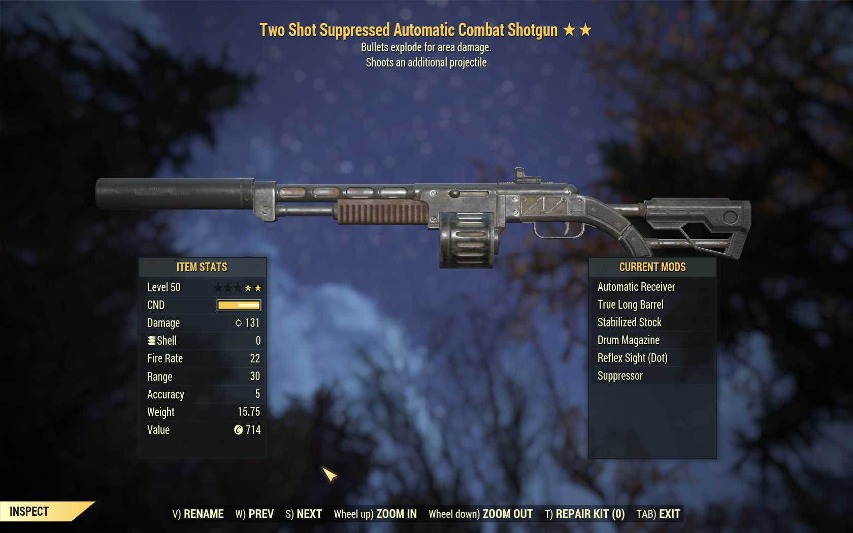 Two Shot Explosive Combat Shotgun