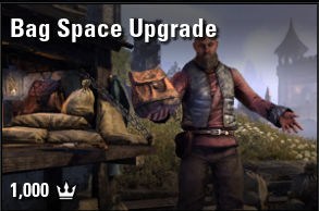 Bag Space Upgrade [NA-PC]