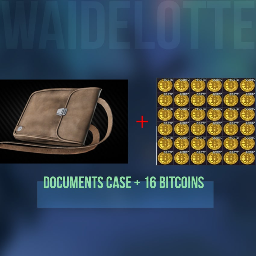 ⭐️ EFT - Documents Case + 16 Bitcoins. 24/7 Instant Delivery