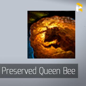 Preserved Queen Bee