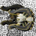 [PC/Steam] Ankyros prime set (MR 2) // Fast delivery!