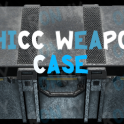 THICC Weapon case  12.11 