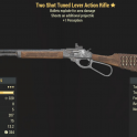 Two Shot Tuned Lever Action Rifle- Level 45(3)