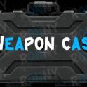 WEAPON CASE  12.11 