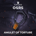 Amulet of Torture  [FAST DELIVERY]