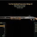 Two Shot Hardened Pump Action Shotgun- Level 45