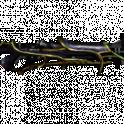 [PC/Steam] Tiberon prime set (MR 14) // Fast delivery!