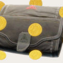 25 BITCOINS + SICC CASE | INSTANT DELIVERY | BEST PRICE!