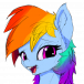 Rainbow Shy - avatar