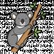 BobSeller - avatar