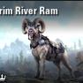Yorgrim River Ram [EU-PC] - image