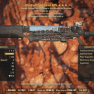 ★★★ Bloodied Explosive Gauss Rifle | +250 Damage Resistance | MAX LVL | FULLY MODIFIED | PRIME | - image
