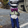 Mr. Fuzzy Mascot Head + Mr. Fuzzy Mascot Suit [Outfit Set] Mr Fuzzy Clean - image