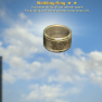 Wedding RING ( AP REFRESH + FOOD, CHEM WEIGHTS) [Legendary Outfit] - image