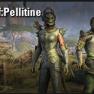 Crown Carfting Motif: Pellitine [EU-PC] - image
