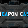 WEAPON CASE |12.11| - image