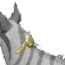 [All-Primes] Kavasa Prime Collar Set - image